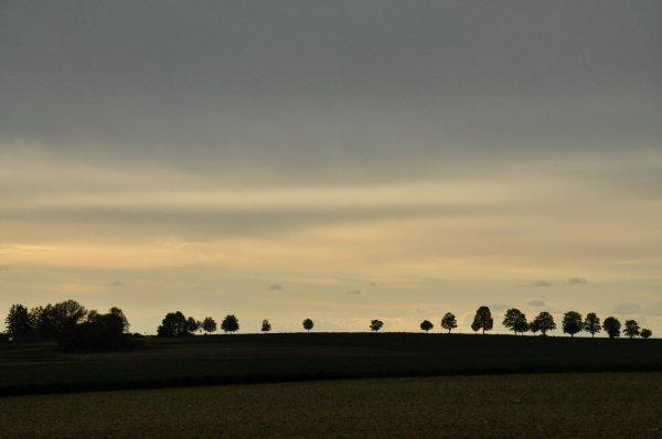 Ingolstadt3_i.jpg
